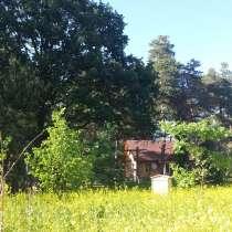 Баня на дровах на природе. Летний бассеин. Мангал. массаж, в г.Брест