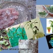 Гидрогель для растений- чудо кристаллы, в Новосибирске
