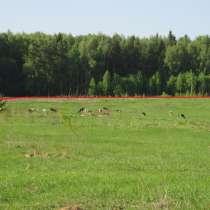 Продажа земли, в Можайске
