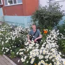Владимир, 41 год, хочет пообщаться, в Сургуте