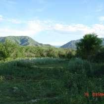 Земельный участок 5,65 га яблоневый сад, в г.Талдыкорган