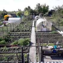 Продам сад СНТ Аэропорт 2, в Челябинске