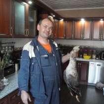 Игорь, 37 лет, хочет пообщаться, в Казани