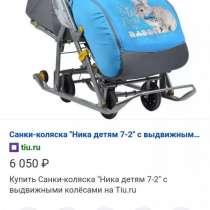 Санки-коляска, в Казани