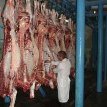 ОПТ. Мясо говядина от надежного поставщика с разумной ценой, в Новосибирске