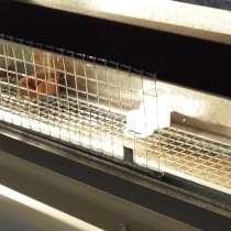 Брудер для выращивания цыплят, в Сочи