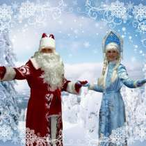 Дедушка Мороз и Снегурочка, в Новосибирске