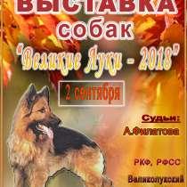 2 сентября выставка собак, в Великих Луках