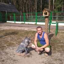 Анатолий, 35 лет, хочет пообщаться – Анатолий, хочет пообщаться, в Орле