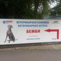 Ветеринарная клиника Бемби Новые Черемушки, в Москве