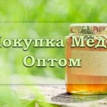 Покупка меда оптом, в г.Киев