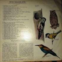 Пластинки с голосами разных птиц-2шт, в хорошем состоянии, в г.Брест