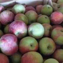 Яблоки Энтерпрайз, в Краснодаре