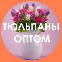 Тюльпаны оптом, в Челябинске