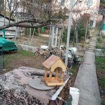 Кормушка, в Новороссийске