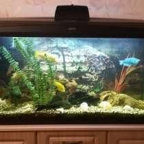 Продам аквариум б/у 200 литров, в г.Жлобин