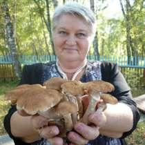 Галина, 60 лет, хочет пообщаться, в Красноярске