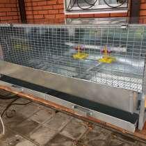 Брудеры для выращивания цыплят, перепелов, в Подольске