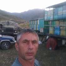 Натуральный горный мёд, в г.Бишкек