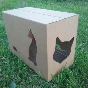 """Домики для кошек """"Домик+"""", в Москве"""