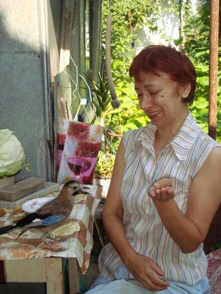 Елена, 53 года, хочет познакомиться