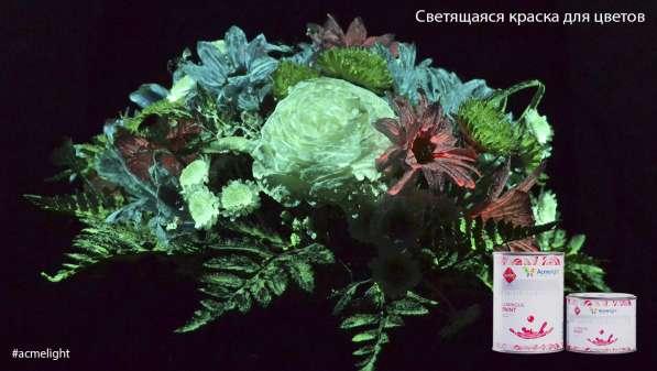 Ищем партнеров в Казани в Казани фото 5