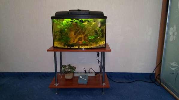 СУПЕР аквариум в фото 3