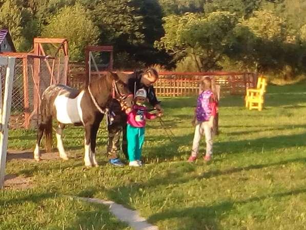 Верховая езда ребенка на пони. Полесск