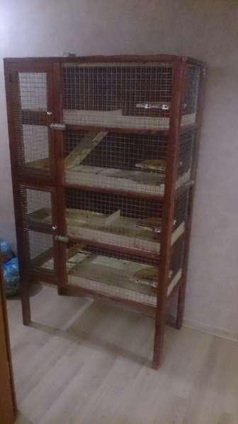 Продаю деревянную клетку! Размеры 170*100*50