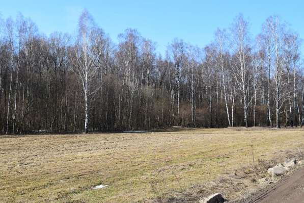 Продам земельный участок 7,5 с. под пмж в Чеховском районе д