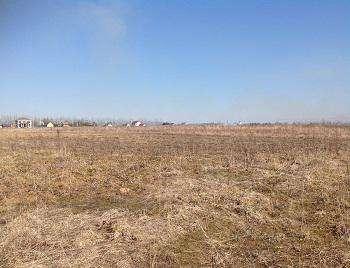 Земельный участок 30 соток (под ЛПХ) в д. Шохово, Можайский район,131 км от МКАД по Минскому шоссе.