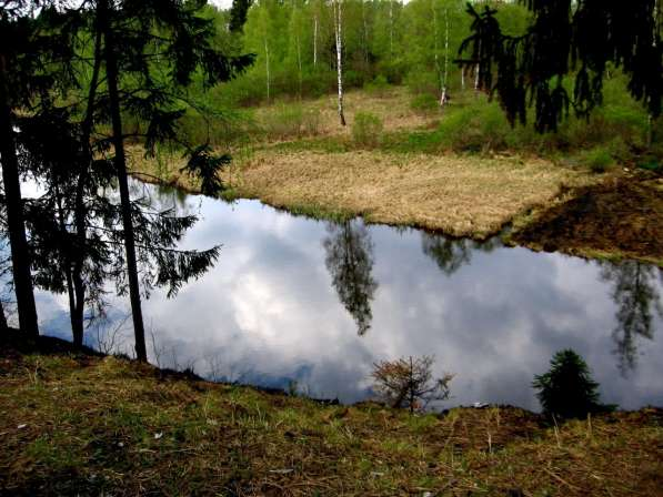 Ногинский район д. Большое Буньково, участок 10 соток