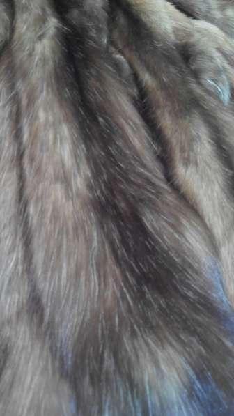Мех соболя бургузинского натурального