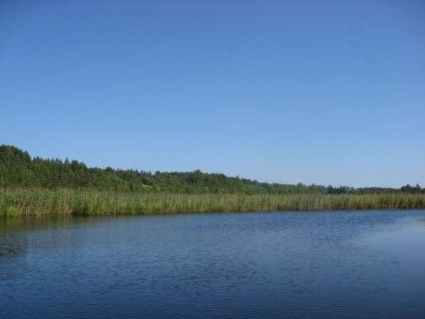 Продам участок у Ладоги на берегу Свири 25 сот. ижс у леса