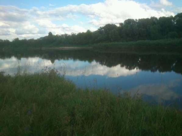 Берег реки Мокша