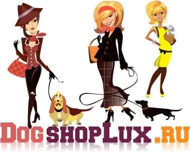 Одежда, обувь и аксессуары для собак