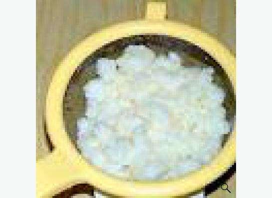Тибетский кефирный гриб