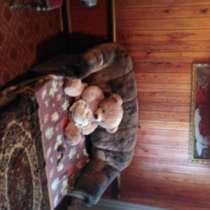 Меняю дом в Новоспасске Ульяновской обл, 259 кв, есть все, в Ульяновске