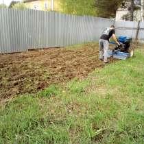 Расчистка дачного участка от сухостоя в Бронницах, в Бронницах