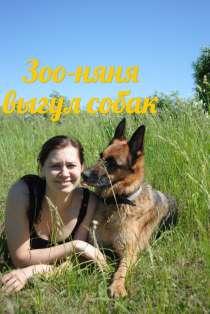 Выгул собак, в Раменское