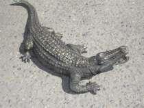 Крокодил бронзовый, в г.Белореченск