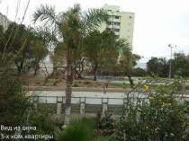 Посуточная, аренда в Израиле, в г.Хайфа