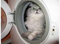 Ремонт стиральных машин, холодильников и др., в Серове