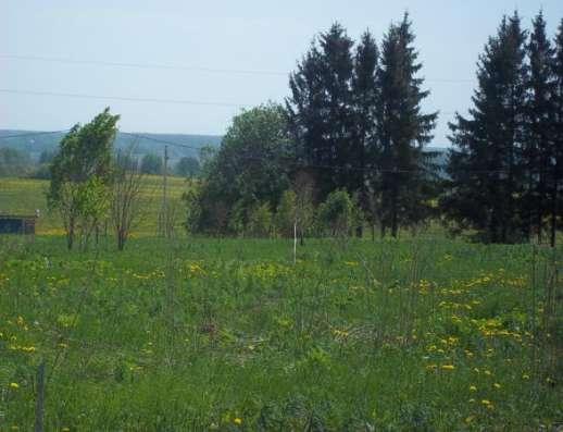 Продается земельный участок 18 соток в п. Сокольниково,Можайский р-н, 123 км от МКАД по Минскому шоссе.. Фото 2