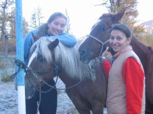 На лошадях к подножию Белухи в Санкт-Петербурге Фото 1