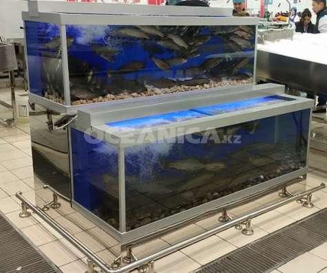 Оборудование для торговли живой рыбой и морепродуктами