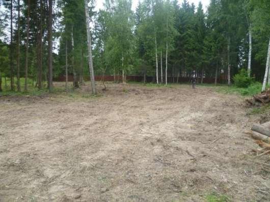 Расчистка участка от кустарника, вырубка (спил) деревьев. Снос дома. в Клине Фото 1