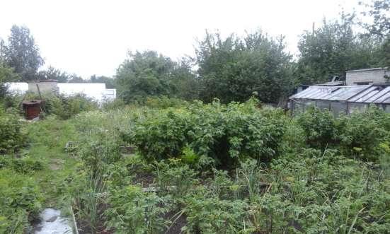 Продам отличный сад в Любителе-2