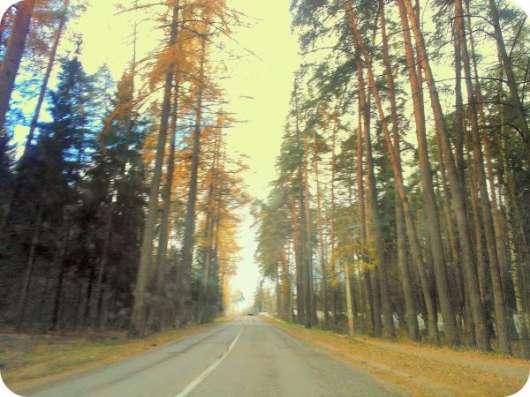 Большие, хвойные деревья. 14 соток. Газ центральный. 1 км от города Звенигород. в Москве Фото 1