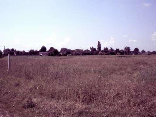 Продам земельный пай общей площадью 8га,4га,160соток в г. Киев Фото 4